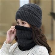 ( gray)  hat woman Winter Korean style all-Purpose woolen  lady warm two