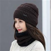 ( Dark coffee color)  hat woman Winter Korean style all-Purpose woolen  lady warm two
