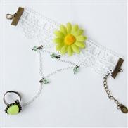 Korean small daisy la...