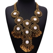 Europe and America exaggerated clavicle chain retro big new European currency coin tassel necklace